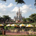 Parking at Disney World